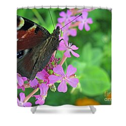 A Butterfly On The Pink Flower 2 Shower Curtain by Ausra Huntington nee Paulauskaite