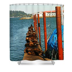 A Dock Of Sea Lions Shower Curtain by Jeff Swan