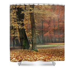 A Foggy Autumn Day Shower Curtain by Hannes Cmarits