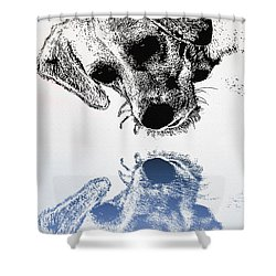A Friendly Reflection Shower Curtain by Bill Cannon