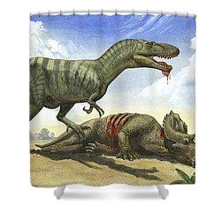 A Gorgosaurus Libratus Stands Shower Curtain by Sergey Krasovskiy