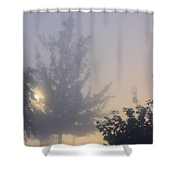 A Gothic Night's Stroll Shower Curtain by Maria Urso