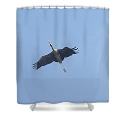 A Painted Stork Flying High In The Sky Shower Curtain by Ashish Agarwal
