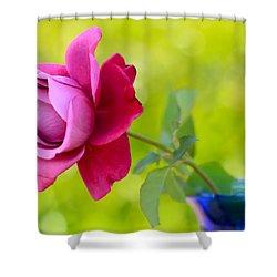 A Single Rose Shower Curtain by Heidi Smith