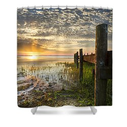 A Special Day Shower Curtain by Debra and Dave Vanderlaan