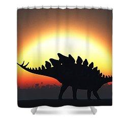 A Stegosaurus Silhouetted Shower Curtain by Mark Stevenson