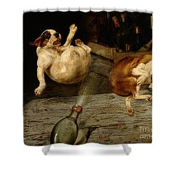 A Surprising Result Shower Curtain by William Henry Hamilton Trood