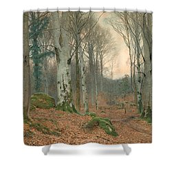 A Welsh Wood In Winter Shower Curtain by JT Watts