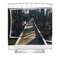 Abbotts Nature Trail Shower Curtain by Brian Wallace