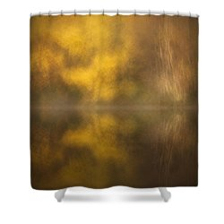 Abstract Birch Reflections Shower Curtain by Andy Astbury