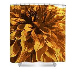 Abstract Flowers 14 Shower Curtain by Sumit Mehndiratta
