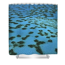 Aerial View Of Great Barrier Reef Shower Curtain by L Newman and A Flowers and Photo Researchers