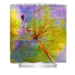 Agapanthus Shower Curtain by Judi Bagwell