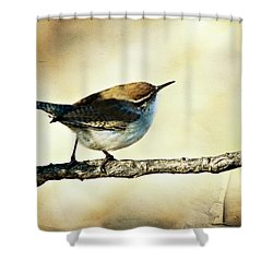 Aged Wren Shower Curtain by Lana Trussell
