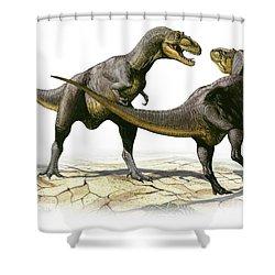 Alectrosaurus Olseni, A Prehistoric Shower Curtain by Sergey Krasovskiy
