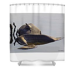 All By Myself Shower Curtain by Brian Wallace