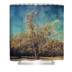 All That's Unknown Shower Curtain by Laurie Search