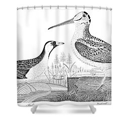American Ornithology Shower Curtain by Granger