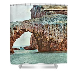 Anacapa Island 's Arch Rock Shower Curtain by Cheryl Young