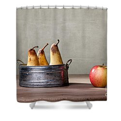 Apple And Pears 01 Shower Curtain by Nailia Schwarz