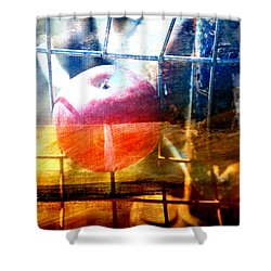 Apple In A Basket Shower Curtain by Toni Hopper