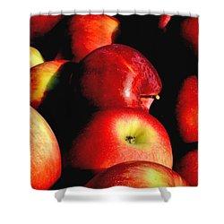 Apple Time Shower Curtain by Joann Vitali