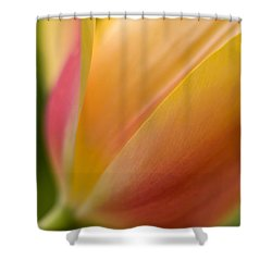 April Grace Shower Curtain by Mike Reid
