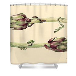 Artichokes Shower Curtain by Alison Cooper