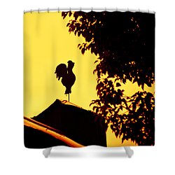 As A Rooster Crows Shower Curtain by Carolyn Marshall