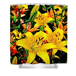 Asiatics In May  Shower Curtain by Chris Berry