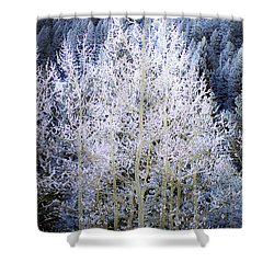 Aspen Lace Shower Curtain by Beth Riser