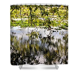August Reflections Shower Curtain by Rachel Cohen