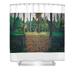 Autum Light Shower Curtain by Jarle Rosseland