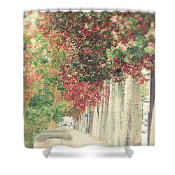 Autumn And Fall Shower Curtain by Ivy Ho