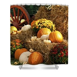 Autumn Bounty Shower Curtain by Kathy Clark