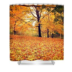 Autumn Leaves - Central Park - New York City Shower Curtain by Vivienne Gucwa