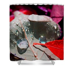 Autumn Menagerie  Shower Curtain by Marie Jamieson