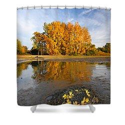 Autumn Nest Shower Curtain by Mircea Costina Photography