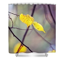 Autumn Nostalgie Shower Curtain by Jenny Rainbow