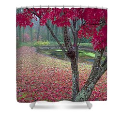 Autumn Red Shower Curtain by Rob Travis
