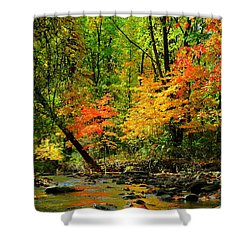 Autumn Reflects Shower Curtain by Frozen in Time Fine Art Photography