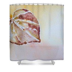 Autumn Shimmer Shower Curtain by Heidi Smith