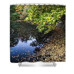 Autumn Tree Colors In Central Park In New York City Shower Curtain by Ellie Teramoto