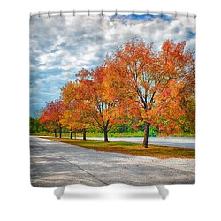 Autumn Trees At Busch Shower Curtain by Bill Tiepelman
