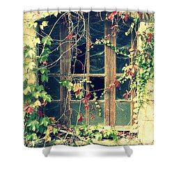 Autumn Vines Across A Window Shower Curtain by Georgia Fowler