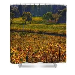 Autumn Vineyards Shower Curtain by Garry Gay