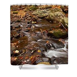 Autumns Creek Shower Curtain by Karol Livote
