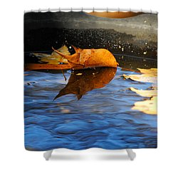 Autumn's Reflection Shower Curtain by Jai Johnson