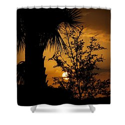 Ave Maria Shower Curtain by Joseph Yarbrough