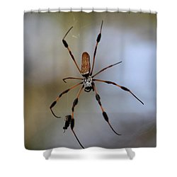 Banana Spider With Prey Shower Curtain by Carol Groenen